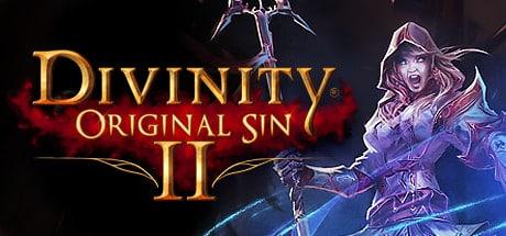 Divinity Original Sin 2 PC Gratuit jeu